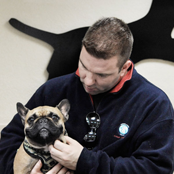 man holding a pug dog