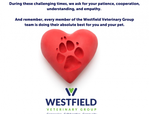 Westfield Closure Extended