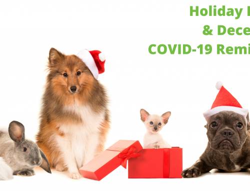 Holiday Hours and December COVID-19 Care Reminders