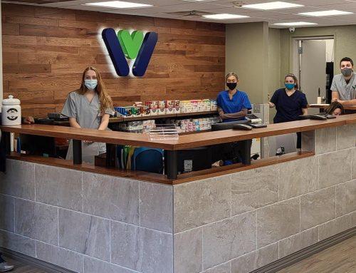 Service Highlight: Veterinary Technicians